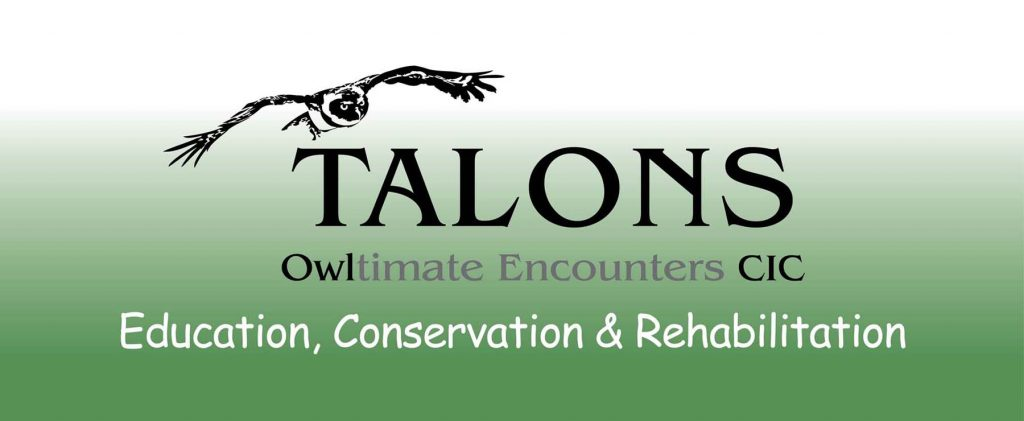 Talons Owltimate Encounters